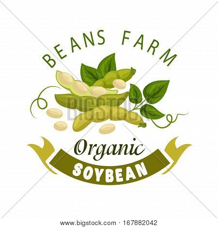 Soybean vector poster. Organic farm harvest of legume beans or soya bean pods with leaves and seeds. Vegetarian or vegan vitamin healthy nutrition food and cuisine. Plant Ingredient for soy sauce, milk, meat