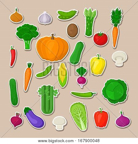 Big set of colorful vegetables. Isolated stickers of vegetables. Natural fresh organic vegetables. Vector illustration.