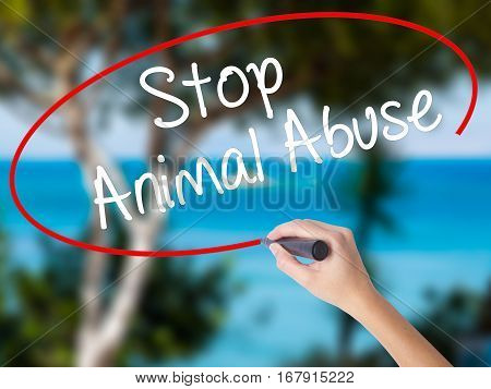Woman Hand Writing Stop Animal Abuse With Black Marker On Visual Screen