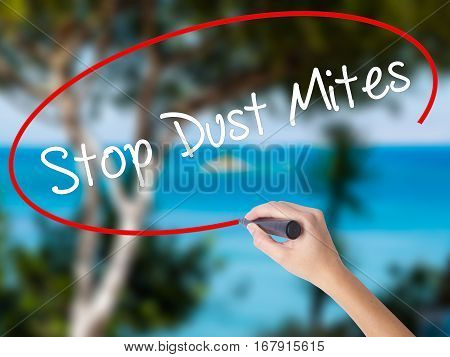 Woman Hand Writing Stop Dust Mites  With Black Marker On Visual Screen.