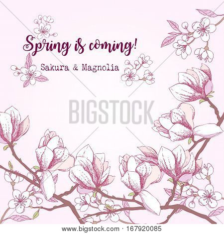 Spring Sakura and Magnolia Background. Hand drawn flowers. Vector illustration