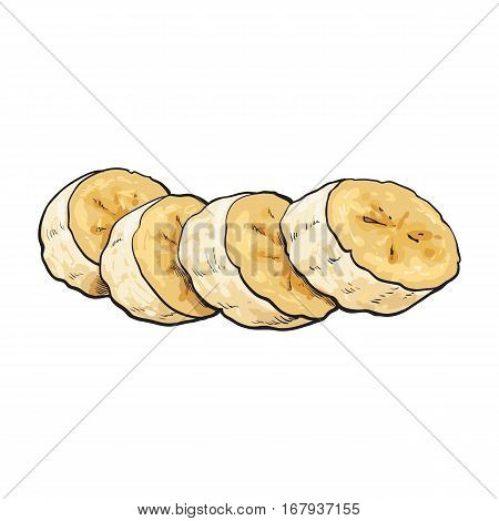 Sliced, chopped unpeeled ripe banana, sketch style vector illustration isolated on white background. Realistic hand drawing of banana chopped into pieces