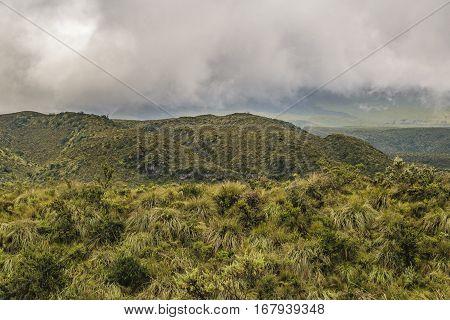 Andean landscape scene at Cotopaxi national park Ecuador