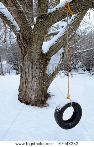 Closeup of old tire swing in winter snow cold