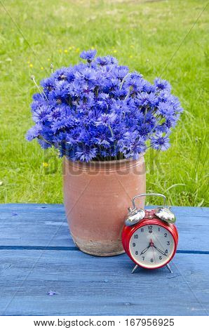 vintage clay ceramic vase with cornflowers and red alarm clock on garden table