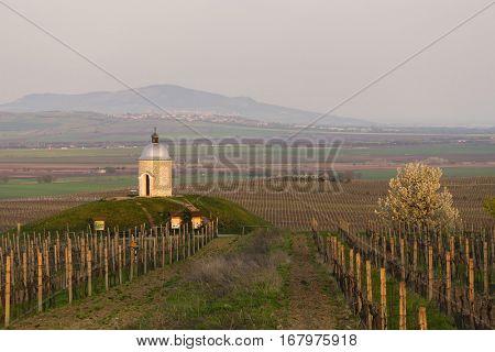 chapel with vineyard near Velke Bilovice, Czech Republic