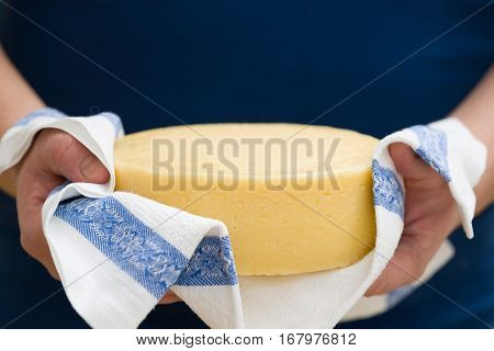A head of fresh organic cheese in man's hands. Food concept