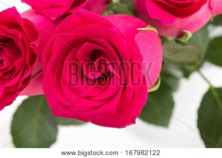 Closeup Of Red Roses Bouquet, On White Background.