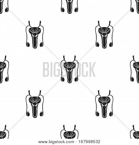 Male reproductive system icon in black style isolated on white background. Organs pattern vector illustration.