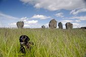Duddo ancient stone circle built by the Henge for rituals poster