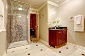 Luxurious bathroom interior design showcases small black counter vanity cabinet glass shower with grey tile surround mosaic marble floor and open door to sauna. Northwest USA poster