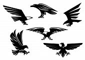 Bird icons set. Vector heraldic eagle or hawk isolated emblem. Gothic or imperial predatory falcon symbol with open spread wings and sharp clutches. Eagle or griffin heraldry sign for sport team mascot, military shield, security badge poster