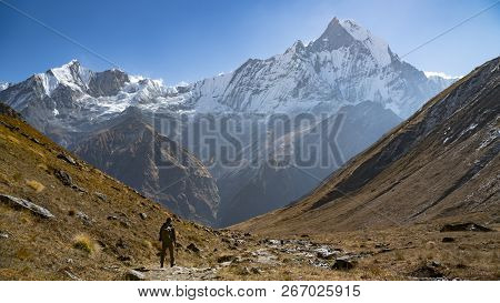 Himalayas Mountain Landscape In The Annapurna Region. Annapurna Peak In The Himalaya Range, Nepal. A