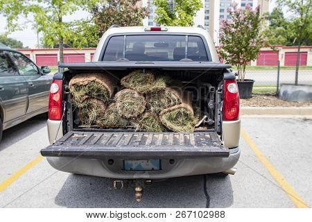 Close-up Of Back Of Pickup Truck With Bed Protector And Rolls Of Sod In The Back With The Tailgate D