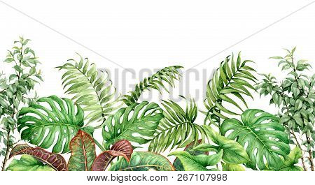 Hand Drawn Tropical Plants. Seamless Line Horizontal Border Made With Watercolor Exotic Green Rainfo