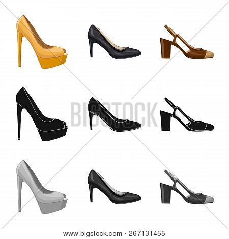 Vector Illustration Of Footwear And Woman Symbol. Set Of Footwear And Foot Stock Vector Illustration
