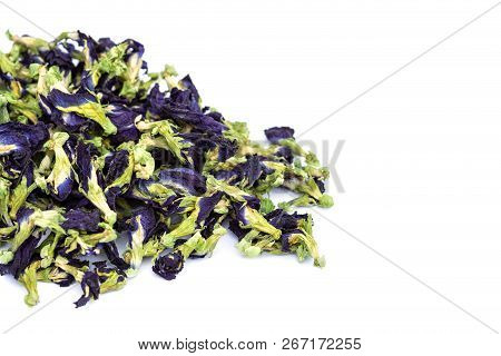 Day Purple Butterfly Pea Flower. Studio Shot And Isolated On White Background. Food Or Herb Concept