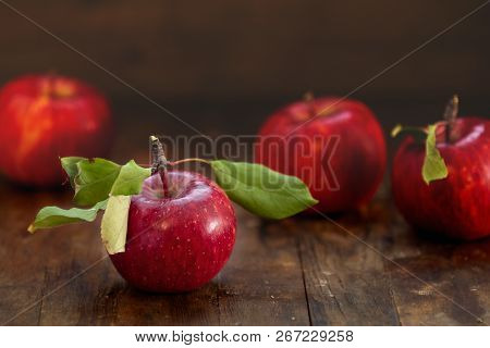 Autumn Harvest Red Apples Fruits On A Wooden Table Background. Copy Space. Dark Rustic Style. Natura