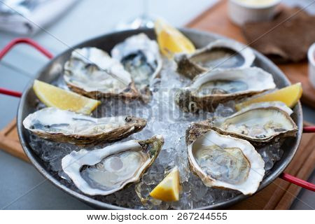 Fresh oysters with lemon's slices in ice. Restaurant delicacy, beautiful table setting. Saltwater oysters dish. Romantic dinner in restaurant.