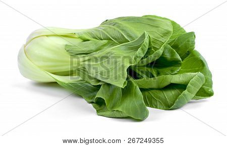 Fresh Pak Choi Cabbage Or Chinese Cabbage, Isolated On White Background. Fresh, Green Vegetable, Clo