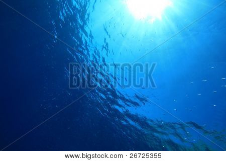 Abstract underwater background with sun rays and fish