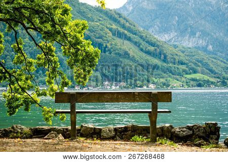 Amazing view of wooden bench and big green tree brench on the background of wide river and mountains