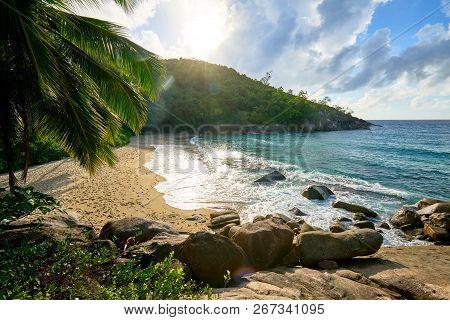 Anse Major Trail, Hiking On Nature Trail Of Mahe, Seychelles