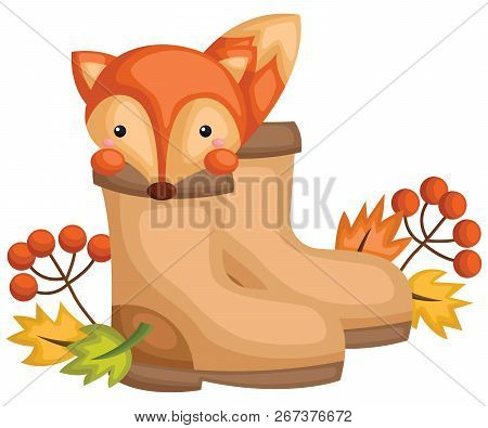 A Vector Of A Cute Fox Inside A Boots