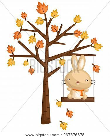 A Rabbit Playing In The Swing On A Tree