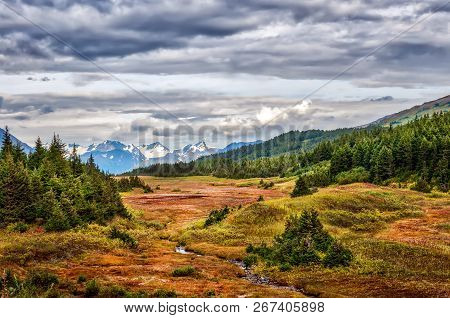 Scenic Landscape Of A Small Stream Running Through The Alaskan Wilderness In The Chugach Mountains D