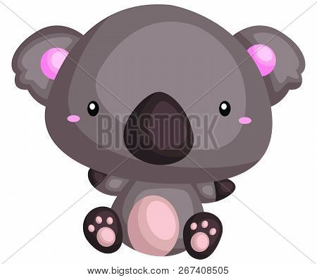 A Vector Of And Chubby And Cute Koala