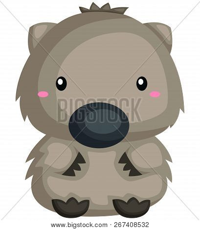 A Vector Of A Cute And Chubby Wombat