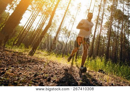 Running Man. Male Runner Jogging At The Park. Guy Training Outdoors. Exercising On Forest Path. Heal
