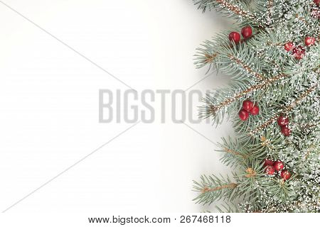 Christmas Composition Of Fir Branches And Berries Of Viburnum On A White Background Isolated. Top Vi