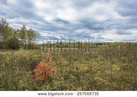 Beautiful Autumn Landscape On A Cloudy Day With A Cloudy Sky.