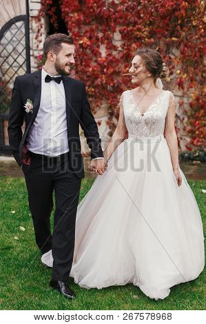 Gorgeous Bride And Stylish Groom Holding Hands And Walking At Wall Of Autumn Red Leaves. Happy Sensu