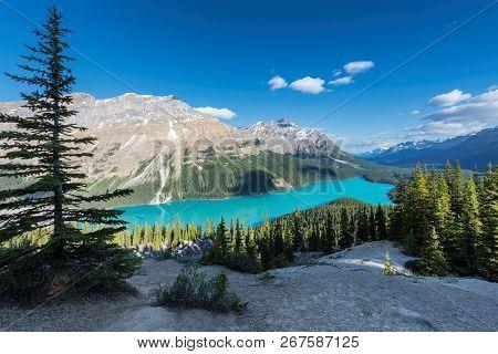 Peyto Lake In Canadian Rockies, Banff National Park, Canada.