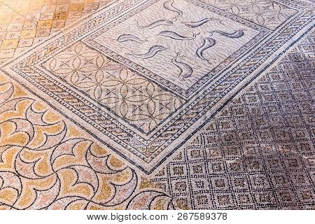 Beautiful Ancient Mosaic in Roman ruins of Volubilis, Unesco, Meknes, Morocco, Africa poster