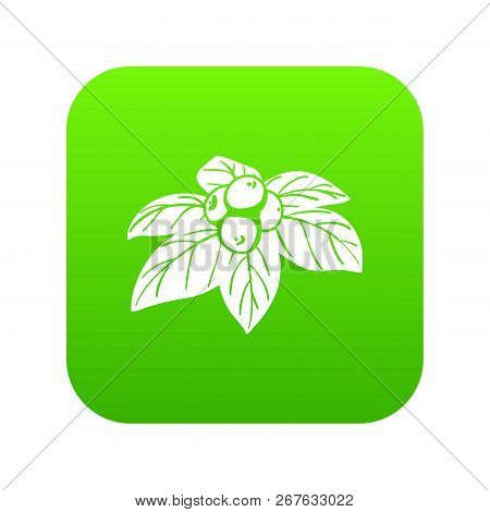 Whortleberries Icon Green Vector Isolated On White Background