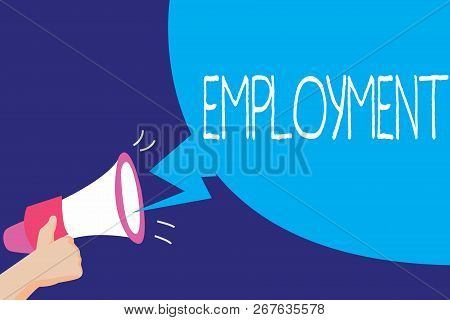 Text Sign Showing Employment. Conceptual Photo State Of Having Paid Work Occupation Utilization Of S