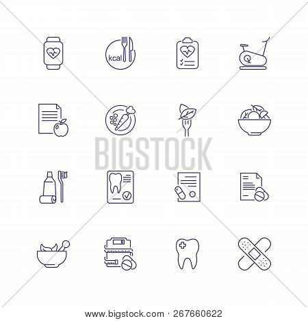 Healthcare Icons. Set Of Line Icons On White Background. Medicine, Tooth, Food, Carrot, Bicycle. Vec