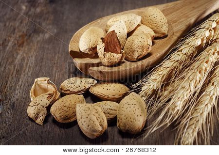 Wooden spoon with almonds and wheat.