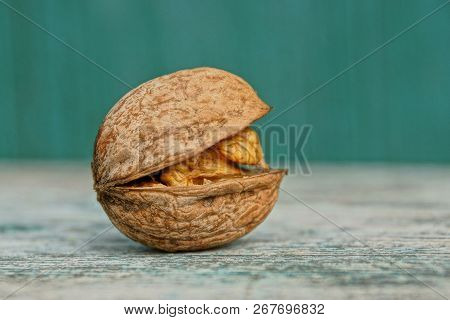 One Brown Walnut Lies On A Gray Wooden Board