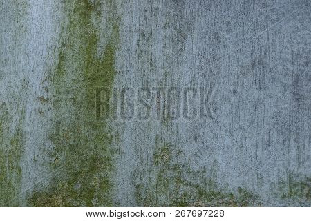 Gray Green Stone Texture From Dirty Concrete Wall
