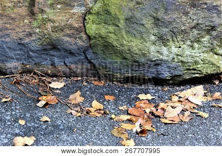 Dried Leaves Blown Against Multicolored Landscaping Rock Lining An Asphalt Driveway.