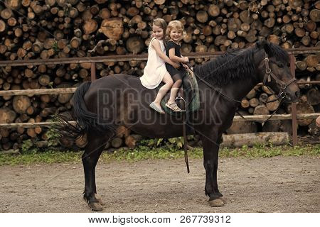 Friend, Companion, Friendship. Girls Ride On Horse On Summer Day. Equine Therapy, Recreation Concept