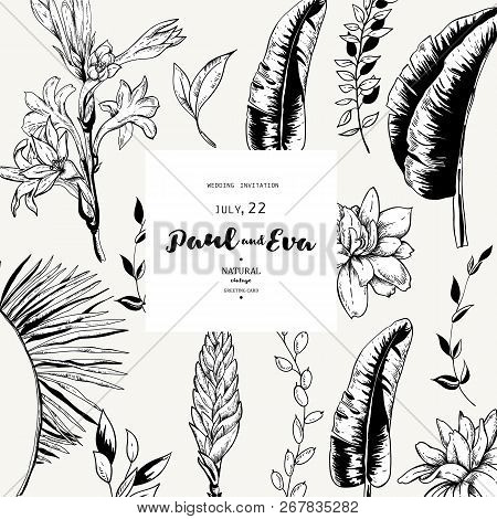 Vector Black White Vector Photo Free Trial Bigstock Can be used in wall decoration. bigstock