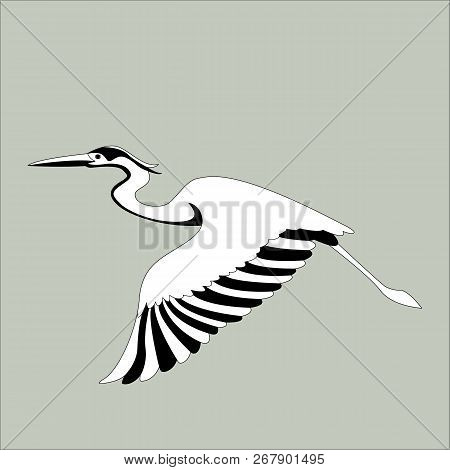 The Heron Is Flying Vector Illustration  Profile View