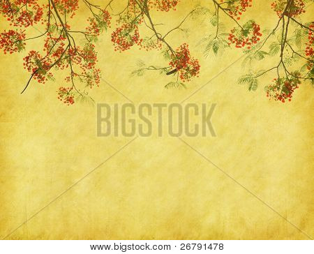 Peacock flowers on tree with Old antique vintage paper background