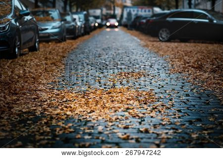 Moody Day In The City. Orange, Yellow Leaves On The Cars During A Autumn Period. Prague City In A Eu
